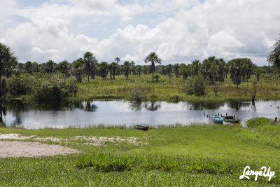 Kamuni Creek, Guyana